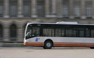nouveau bus-web